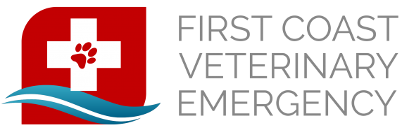 first coast veterinary emergency