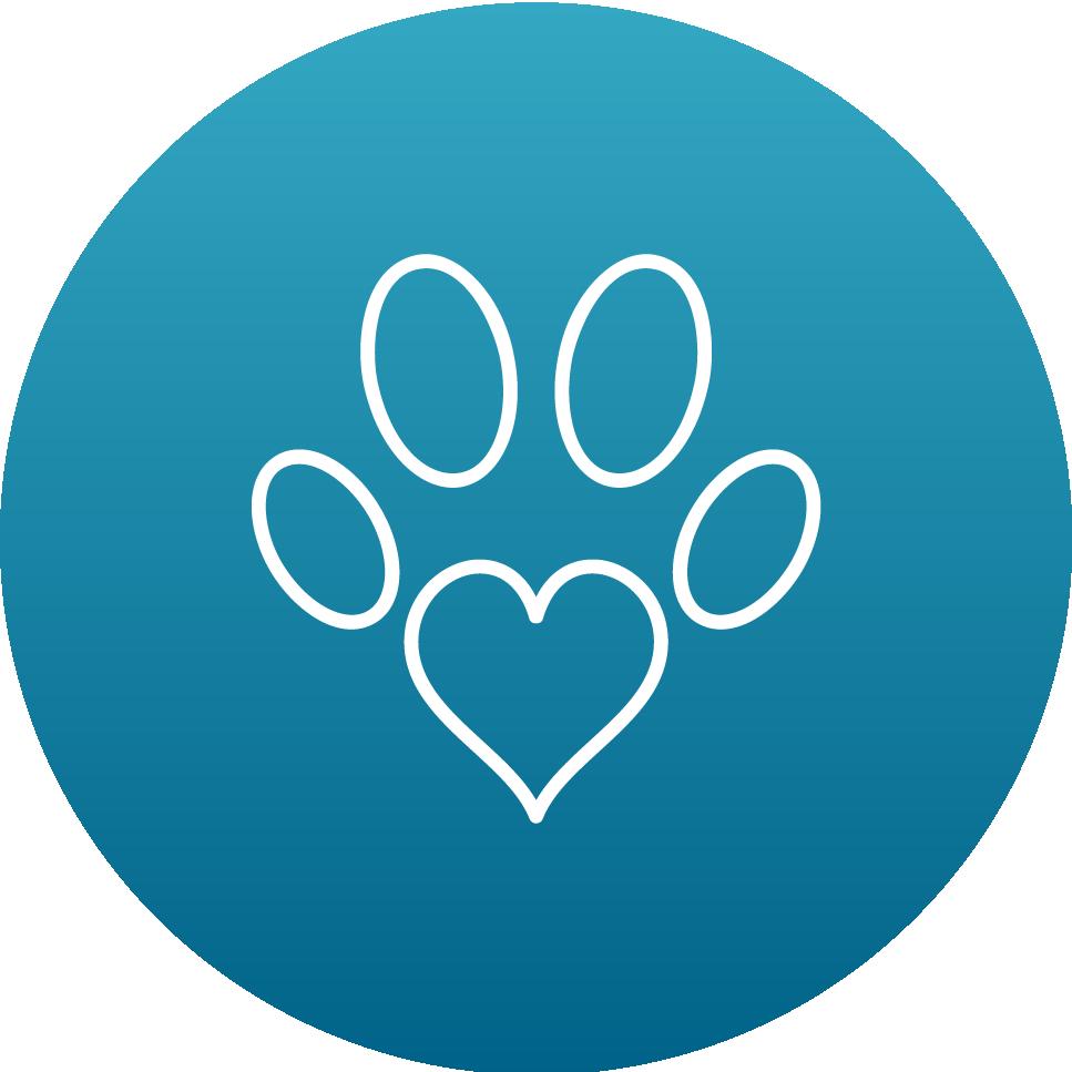veterinary rehabilitation services
